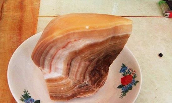 """Đào được """"đá thịt"""" 100 triệu năm tuổi cực hiếm"""