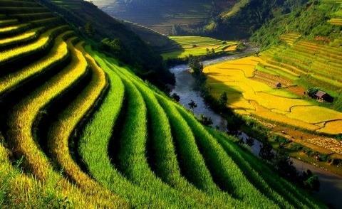 Vẻ đẹp Việt Nam qua ảnh khiến thế giới mê hoặc