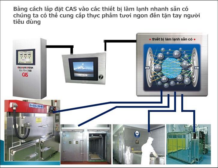 CAS: Công nghệ giúp vải tươi quanh năm