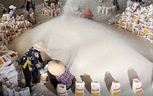 Trung Quốc kiểm soát chặt, xuất khẩu gạo của Việt Nam giảm mạnh