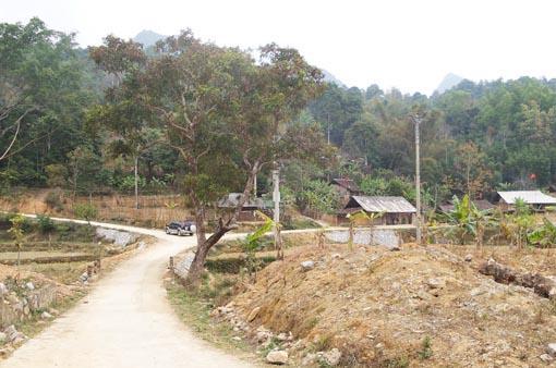 Hội Nông dân tỉnh: Huy động làm mới, bê tông hóa gần 200km đường giao thông nông thôn