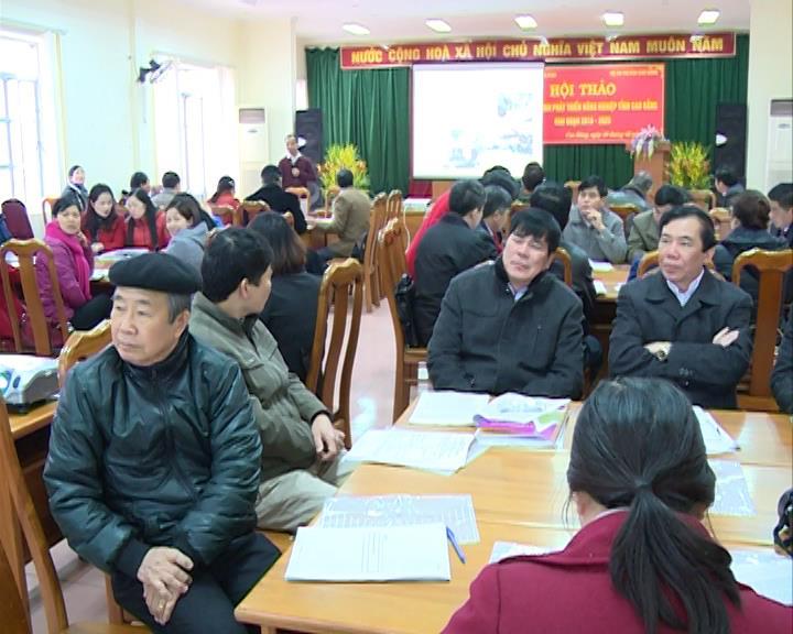 Hội thảo Đổi mới mô hình phát triển nông nghiệp tỉnh Cao Bằng
