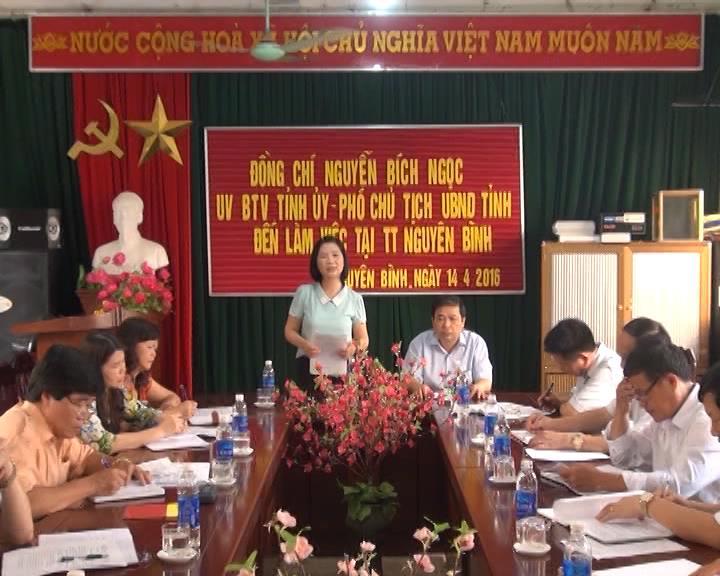 Phó Chủ tịch UBND tỉnh kiểm tra công tác bầu cử tại Nguyên Bình