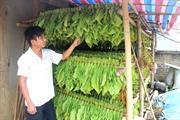 Cao Bằng: Tập trung các giải pháp đẩy mạnh xây dựng nông thôn mới