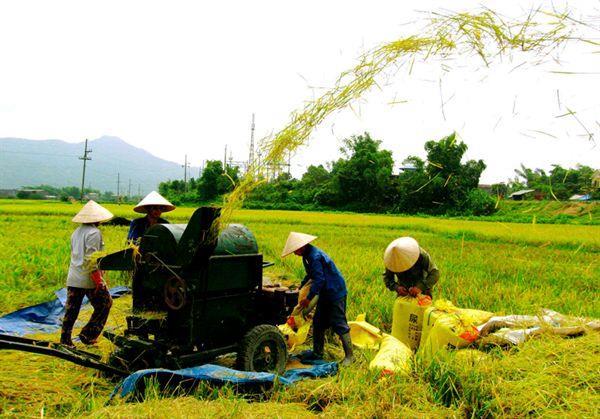 Hòa An: Xã Hồng Việt đạt 14/19 tiêu chí nông thôn mới