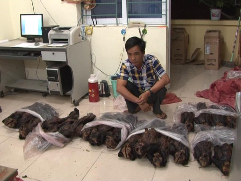 Phòng Cảnh sát môi trường, Công an tỉnh Bắt vụ vận chuyển xương động vật hang dã