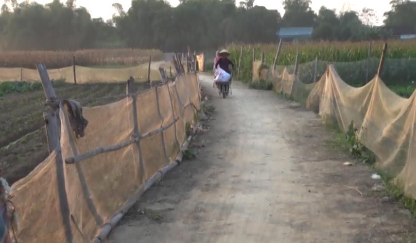 Hòa An: Bình Long huy động nguồn lực xây dựng nông thôn mới