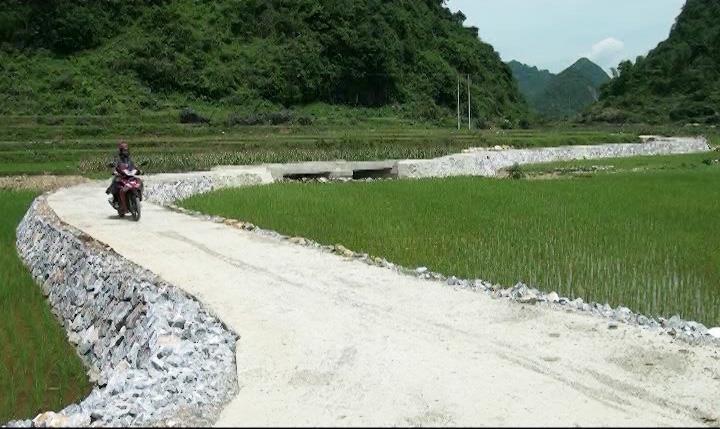 Phong trào hiến đất làm đường xây dựng nông thôn mới ở Phong Châu