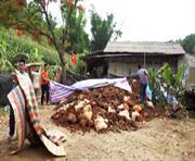 Hòa An: Kiểm tra và tạm giữ khoảng 50 tấn quặng sắt trái phép tại xã Dân Chủ