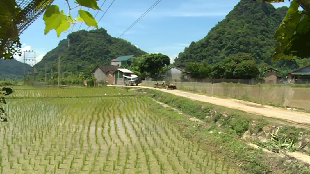 Tập trung nguồn lực thực hiện Chương trình xây dựng nông thôn mới