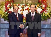 Thông cáo báo chí chung về chuyến thăm Việt Nam của Tổng thống nước Ai Cập