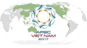 Cơ quan nào là đầu mối của Việt Nam trong hợp tác APEC?
