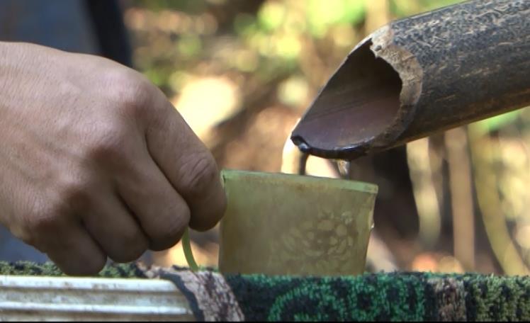 Nồng đượm hương rừng rượu báng