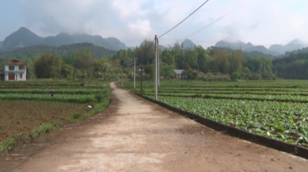 Nam Tuấn chuyển mình từ phong trào xây dựng nông thôn mới