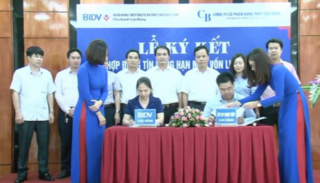 BIDV Chi nhánh Cao Bằng - Điểm sáng học tập và làm theo tư tưởng, đạo đức, phong cách Hồ Chí Minh trong khối doanh nghiệp