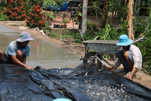 Cả nước có 3.370 xã đạt chuẩn nông thôn mới