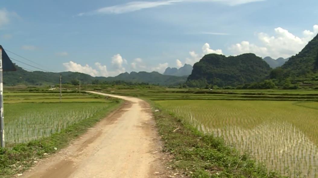 Toàn tỉnh còn 12 xã đạt dưới 5 tiêu chí nông thôn mới
