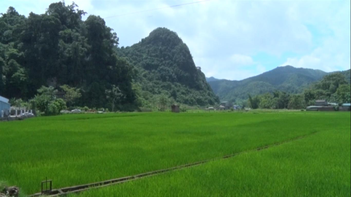 Nguyên Bình: Kết quả sau 3 năm thực hiện Chương trình Mục tiêu quốc gia xây dựng nông thôn mới