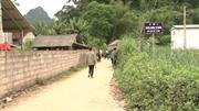 Hội Phụ nữ xã Đại Sơn chung tay xây dựng nông thôn mới