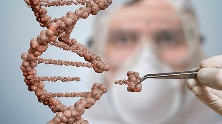 Thành lập ủy ban nghiên cứu về chỉnh sửa gene