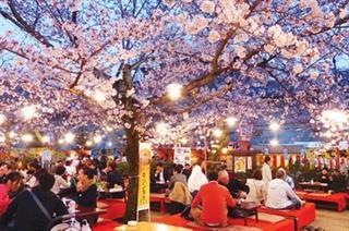 Lễ hội hoa anh đào Nhật Bản – Hà Nội 2020