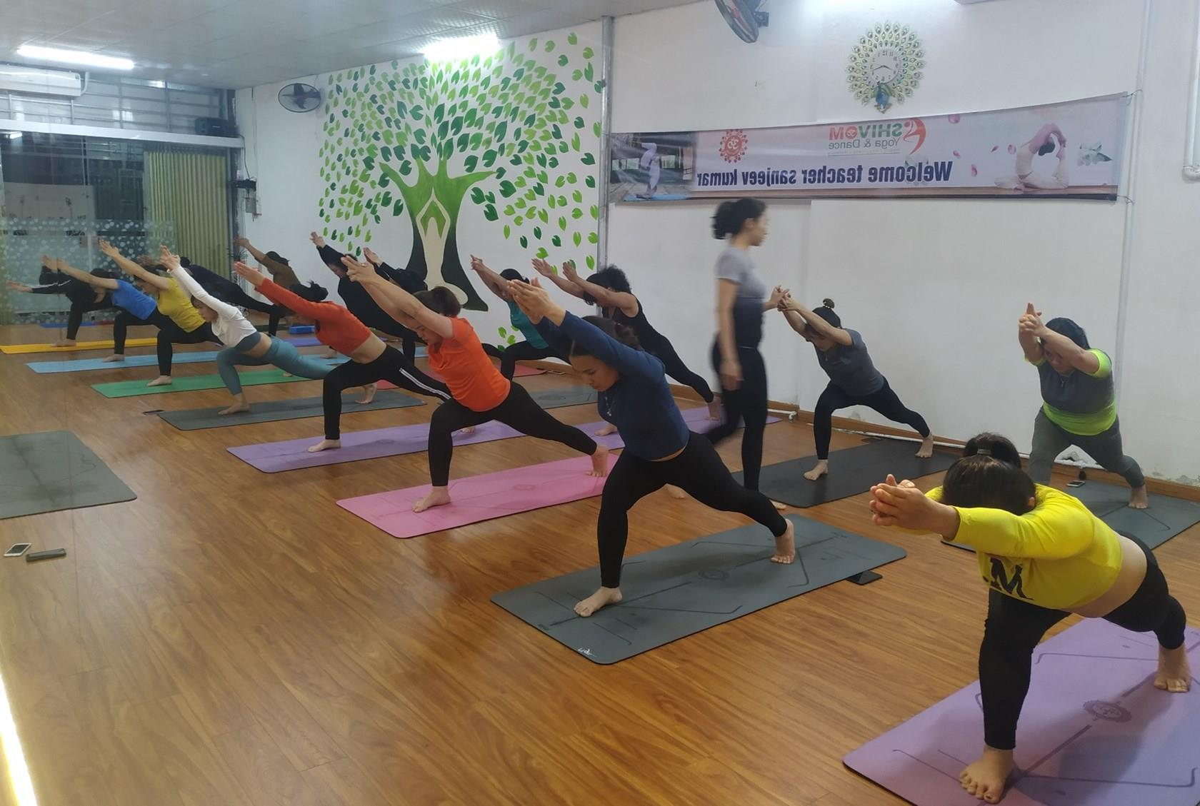 Sôi nổi phong trào luyện tập yoga