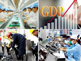 Tổ chức Tổng điều tra kinh tế năm 2021