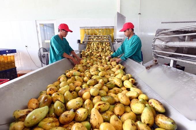 Phát triển công nghiệp chế biến nông sản, cơ giới hóa nông nghiệp