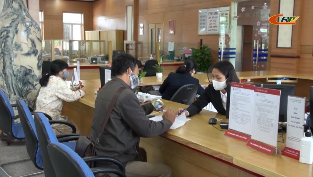 Tổng nguồn vốn quản lý và huy động của các ngân hàng trên địa bàn tỉnh đạt trên 22.000 tỷ đồng