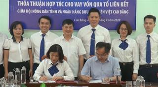 LienVietPostBank - Hội Nông dân tỉnh: Ký kết thỏa thuận hợp tác cho vay vốn qua tổ liên kết