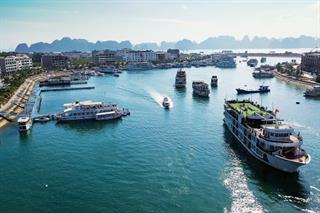 Giảm 50% phí thăm quan lưu trú trên vịnh Hạ Long từ ngày 10/7