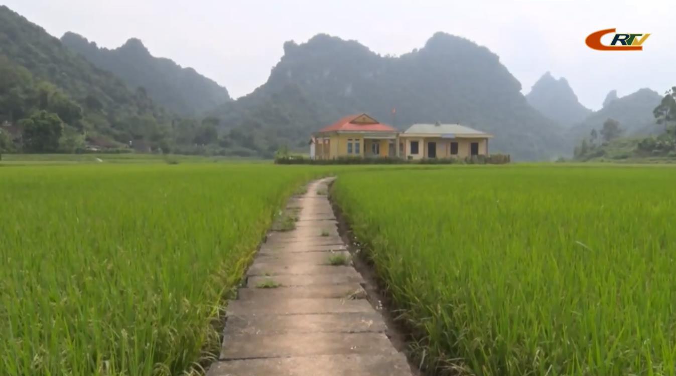 Giai đoạn 2015 - 2019, Thạch An có 2 xã về đích nông thôn mới