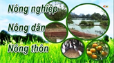 Chuyên mục Nông nghiệp - Nông dân - Nông thôn ngày 05/9/2020