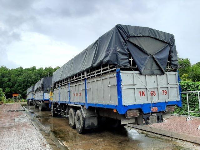 Kiên Giang: Tạm giữ 3 xe tải sử dụng biển kiểm soát, giấy tờ quân sự giả