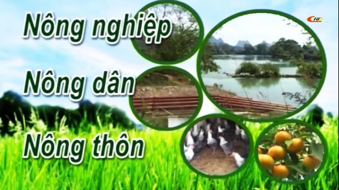 Chuyên mục Nông nghiệp - Nông dân - Nông thôn ngày 05/12/2020