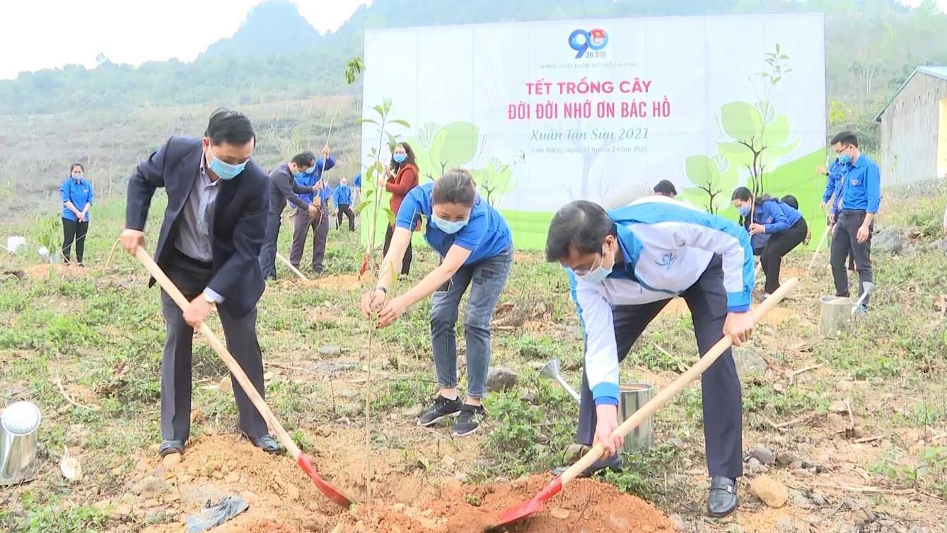 """Trung ương Đoàn TNCS Hồ Chí Minh phát động Tết trồng cây """"Đời đời nhớ ơn Bác Hồ"""" xuân Tân Sửu 2021"""