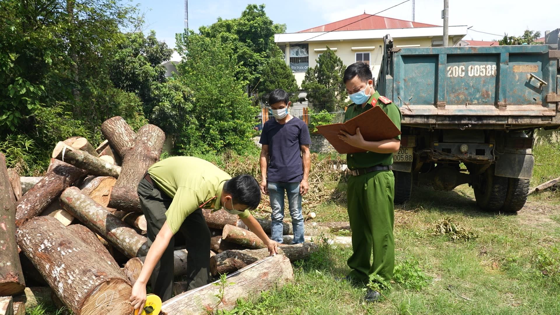 Bắt giữ 1 xe tải chở gỗ lậu