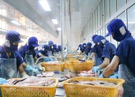 Gỡ khó cho doanh nghiệp thủy sản phục hồi sản xuất