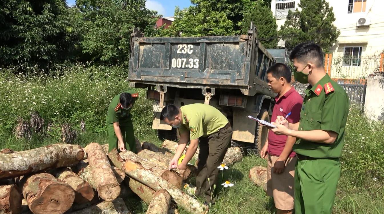 Thu giữ hơn 1,9 m3 gỗ không rõ nguồn gốc
