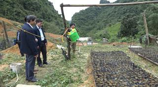 Giám sát công tác lãnh đạo, chỉ đạo và tổ chức thực hiện Đề án nông nghiệp thông minh tại huyện Thạch An